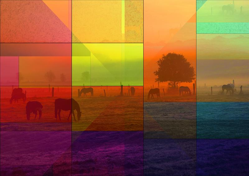 Horses and Landscape by PLATUX