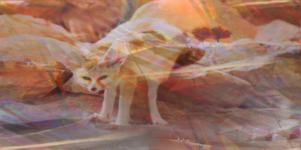 Desert Fox - Nature Art - PLATUX modern Art 2016